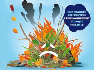 Brûlage des déchets verts interdit