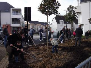 "OPERATION ""UN ARBRE UN ENFANT"""
