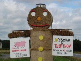 MOISSON DU TELETHON