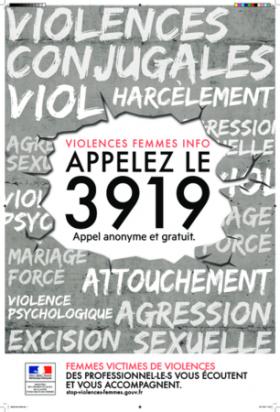 JOURNEE INTERNATIONALE POUR L'ELIMINATION DE LA VIOLENCE A L'EGARD DES FEMMES
